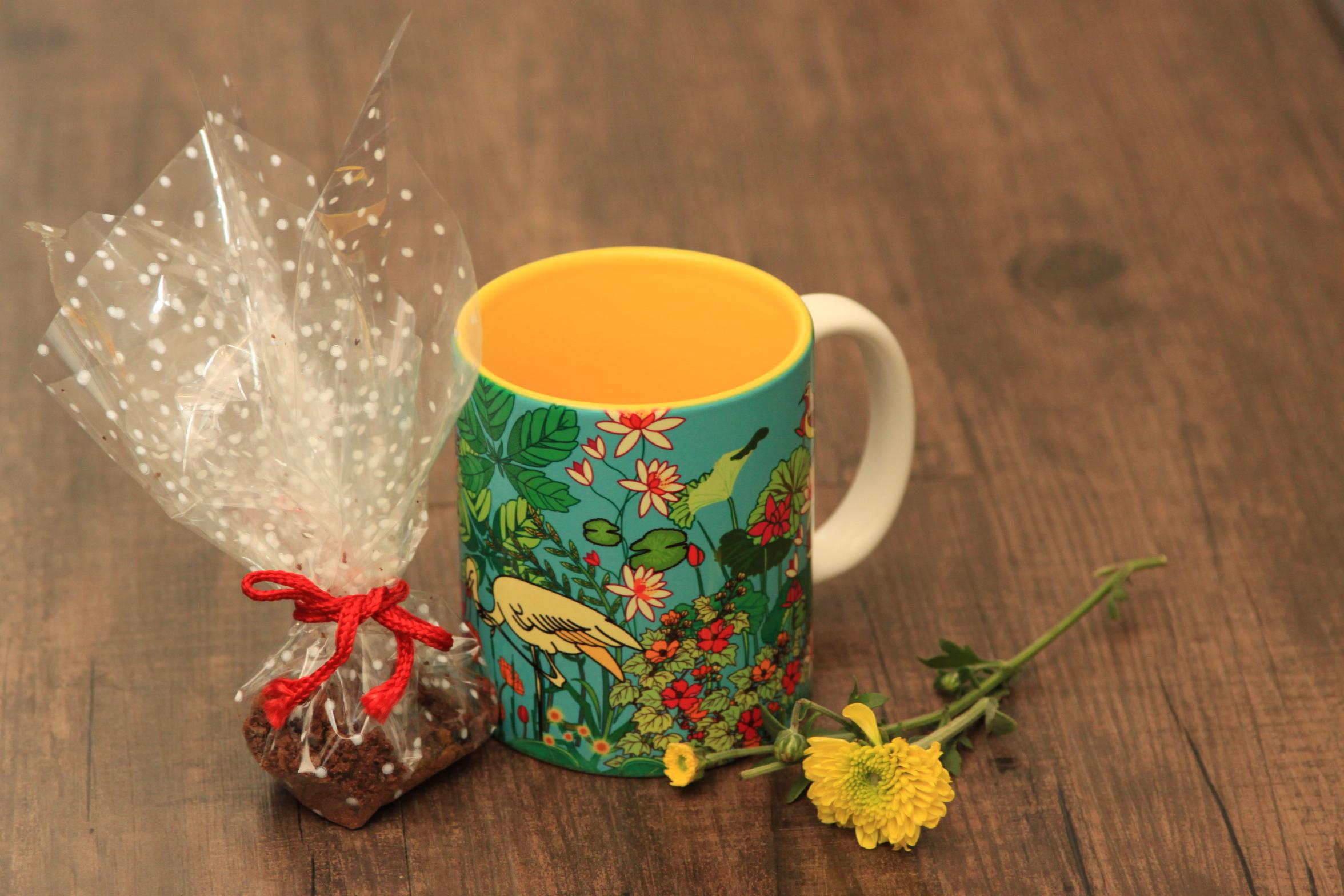 Hot Cocoa in a Mug